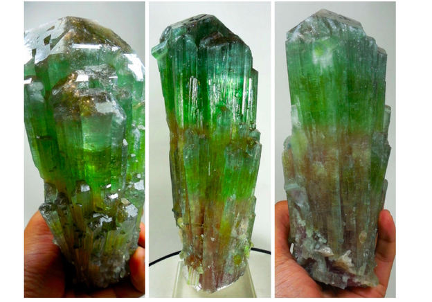 Discovery of the week: 17 cm Multi-Coloured Elbaite Tourmaline Crystal