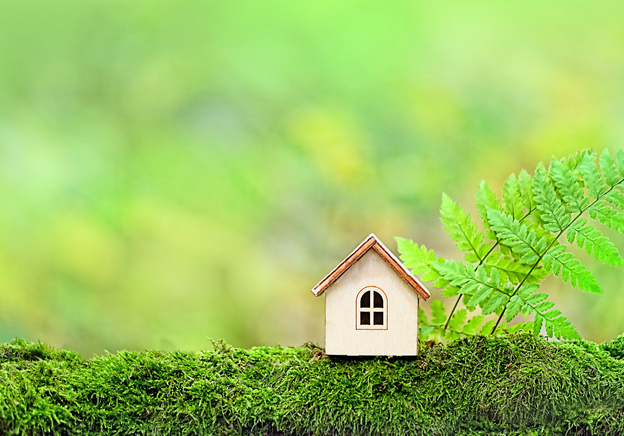Selling from home: how to sell in an eco-friendly way