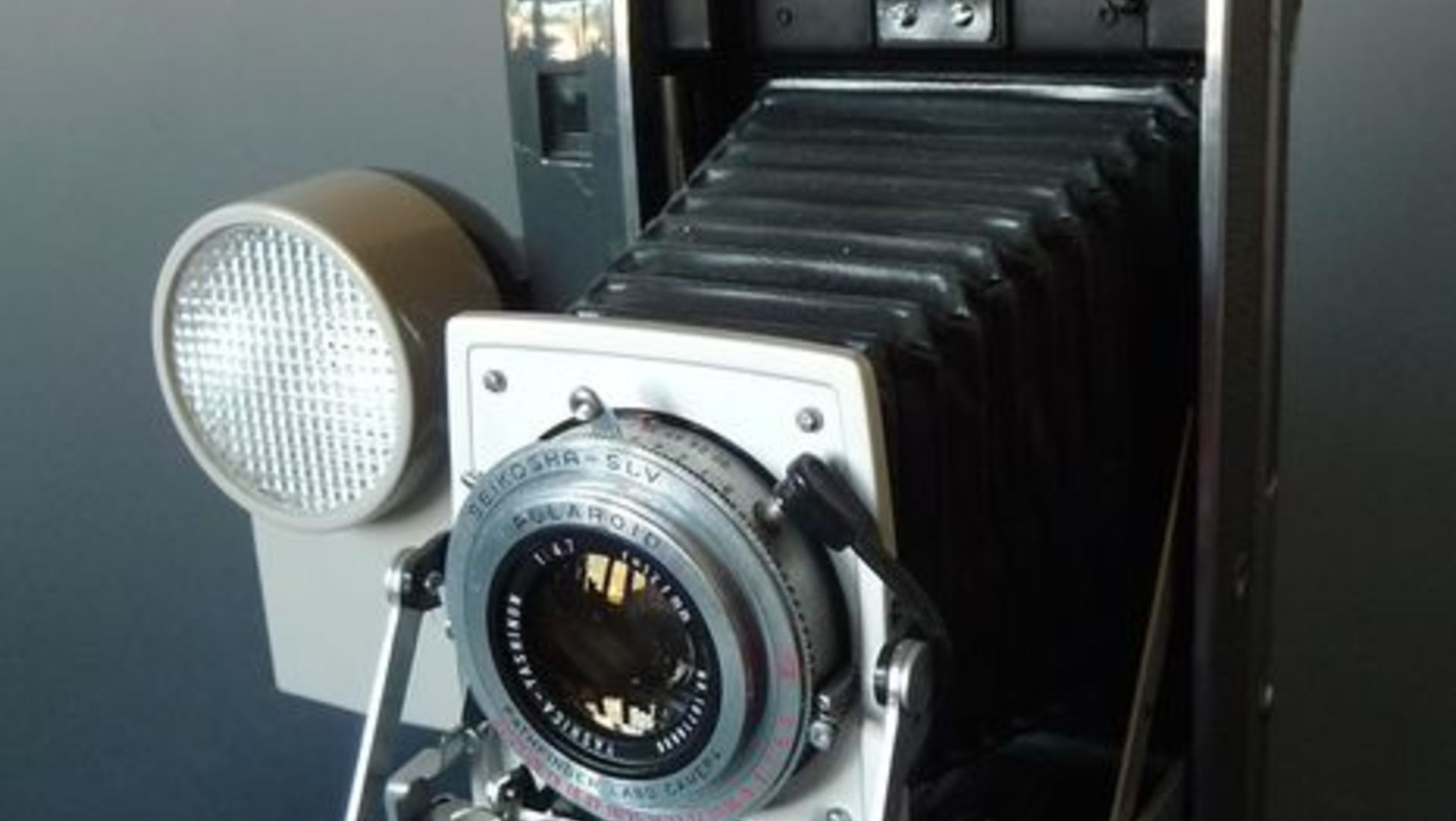 Chegámos ao fim da nossa lista, 420 € é o valor mais alto por que foi  vendida uma Polaroid na Catawiki. ef44042b4e