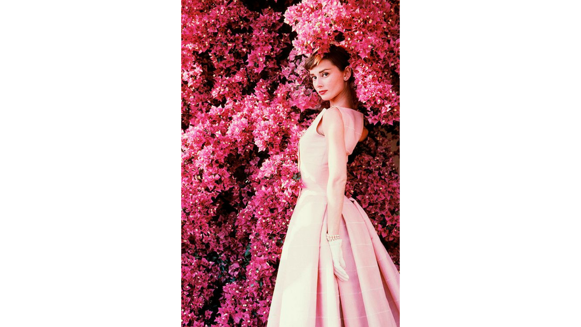 10 Facts You Didnt Know About Audrey Hepburn Catawiki